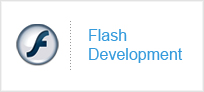 Flash Development